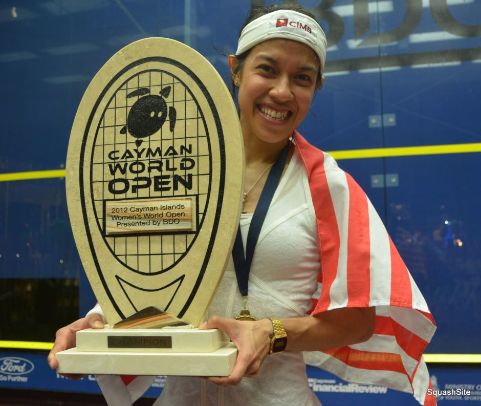 essay about datuk nicol ann david Nicol ann david is a malaysian professional squash player who became  as  the youngest person ever to be conferred datukship in penang.