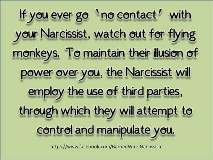 To My Narcissist Father-In-Law's Flying Monkey | Open Letter